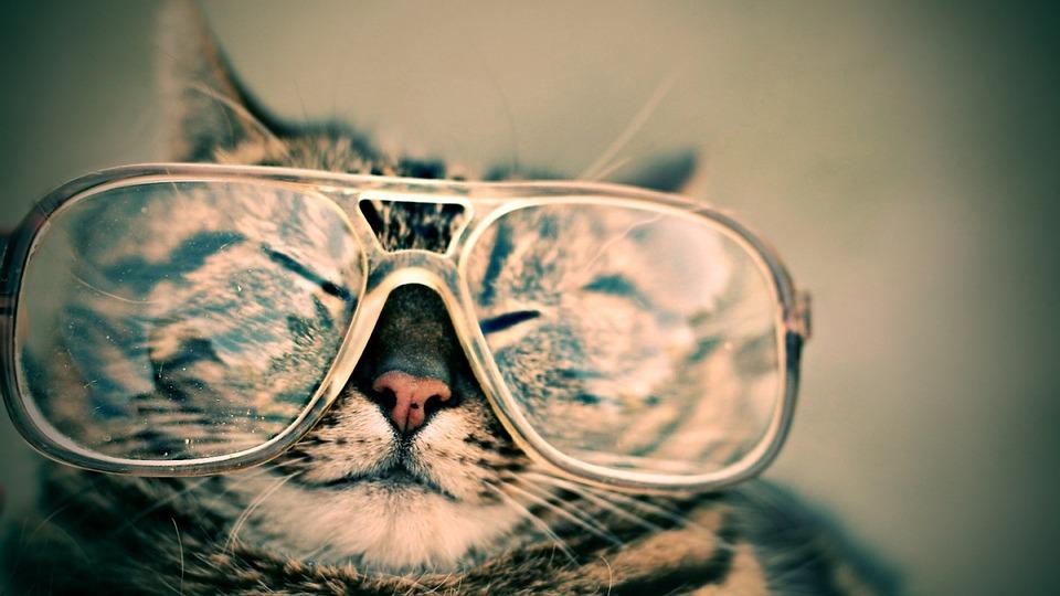 Occhiali, occhi e iridi: come gli occhiali correggono i difetti oculari
